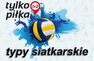 tylkoPilka_typy_siatkowka
